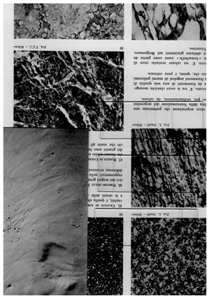 Macchieraldo&Palasciano - Possibilities
